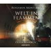 H�rbuch Cover: Welt in Flammen