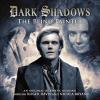 H�rbuch Cover: Dark Shadows, 15: The Blind Painter (Unabridged) (Download)