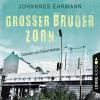 H�rbuch Cover: Gro�er Bruder Zorn (Ungek�rzt) (Download)