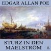 H�rbuch Cover: Sturz in den Maelstr�m (Download)