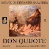 H�rbuch Cover: Don Quijote (Buch 3) (Download)