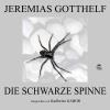 H�rbuch Cover: Die schwarze Spinne (Download)